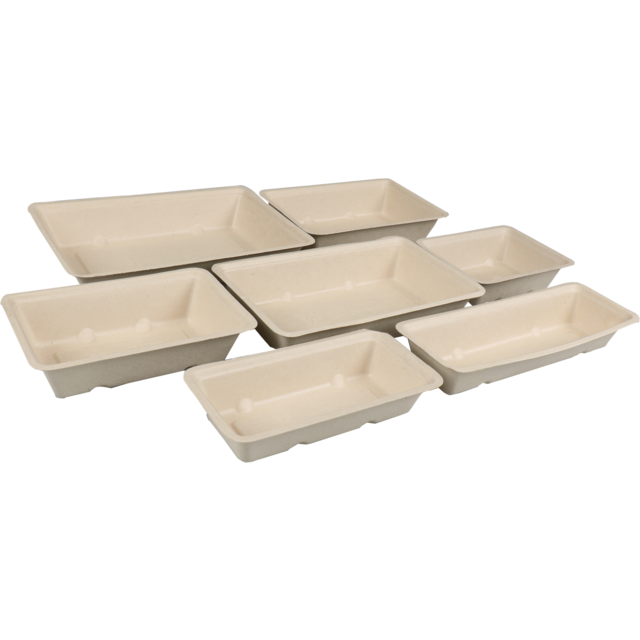 Biodore® Container, Bagasse, A16, 200x72x32mm, brown  2